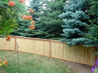 privacy_fence