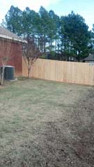 privacy_fence_2